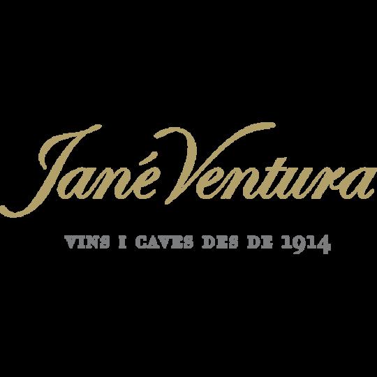 logo_janeventura1024x1024